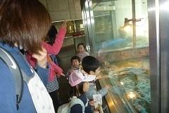 動物園 お別れ遠足後編2.jpg