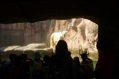 動物園お別れ12.jpg