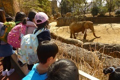 動物園お別れ9.jpg