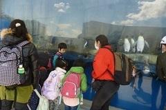 水族館6.jpg