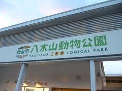 zoo2.jpg